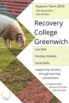 http://www.therecoveryplace.co.uk/wp-content/uploads/2019/08/Recovery-College-Autumn-2019-240x360.jpg